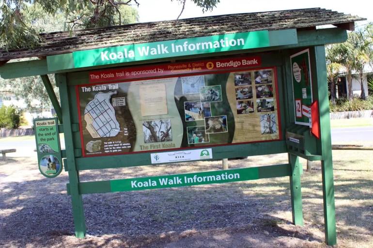 Der Koala Walk auf Raymond Island startet direkt am Fähranleger