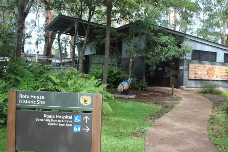 Im Koala Hospital in Port Macquarie kümmert man sich seit 1973 um verletzte Tiere