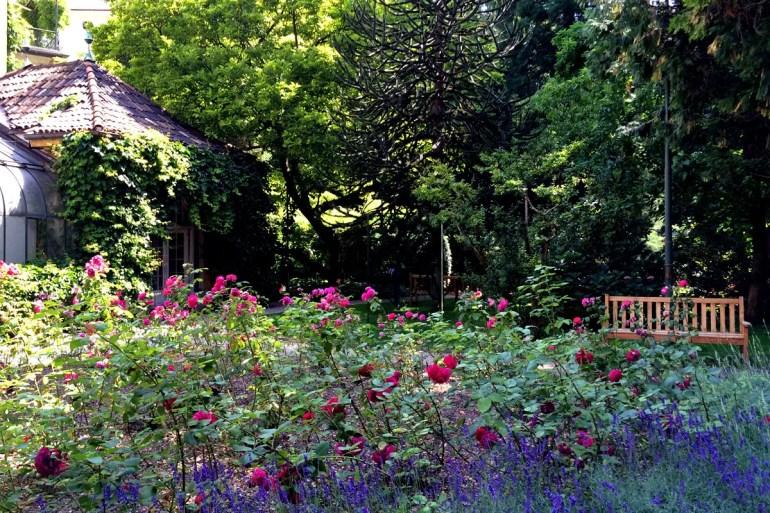 Im Sommer blüht der Park auf