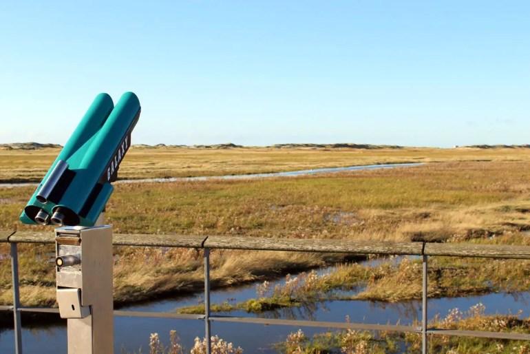 Von der Seebrücke öffnet sich der Ausblick über die Dünen und Salzwiesen