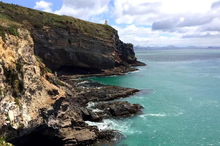 Neuseeland hat viele raue Küsten wie hier auf der Otago Peninsula