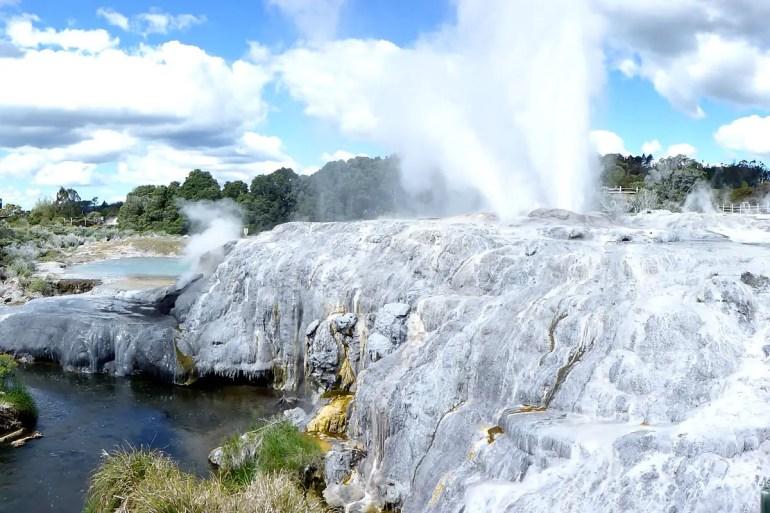 Die Geysire rund um Rotorua sind spektakulär und ein Must-see