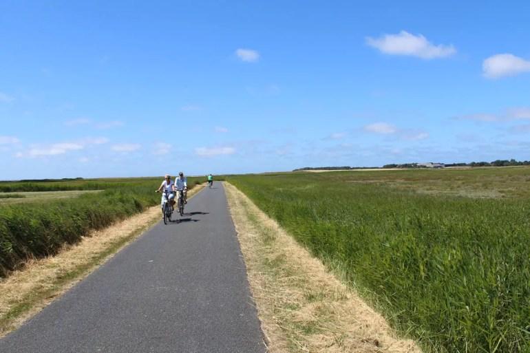 Perfekt für Radler: Föhr bietet über 200 Kilometer Radwege