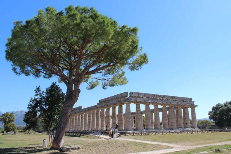 In Paestum kannst du drei griechische Tempel besichtigen