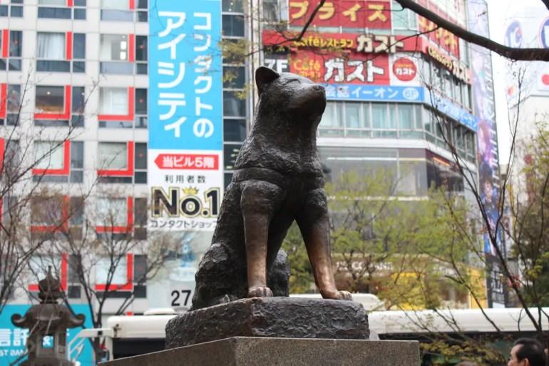 Hachiko wartete unweit des Shibuya-Bahnhofs auf sein Herrchen
