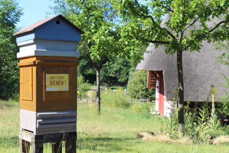 Der Bienenpfad im Freilichtmuseum Schwerin-Mueß