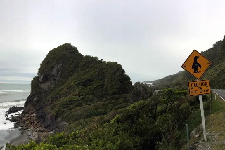 Regenwald, Gletscher und Pinguine: die Westküstenstraße auf Neuseelands Südinsel