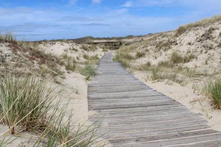 Auf Bohlenwegen kannst du auf Amrum durch die Dünen wandern