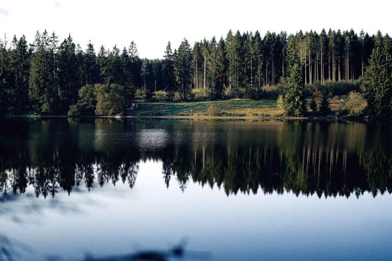 Im Oberharz gibt es viele Teiche und Seen (Credit: Unsplash | Miri Mina)