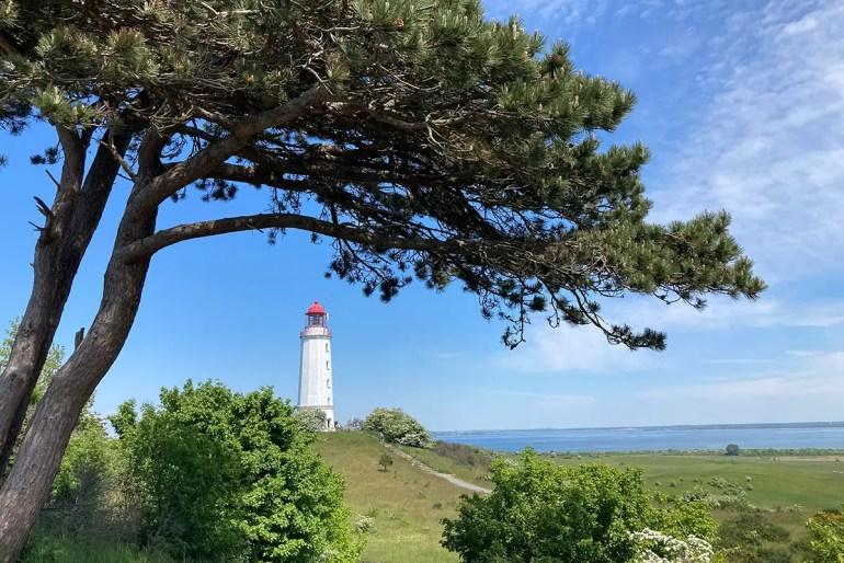 Der Leuchtturm Dornbusch im Norden von Hiddensee ist das Wahrzeichen der Insel