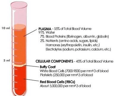 Hematocrit; Erythrocyte Volume. Packed; Packed Red-Cell Volume