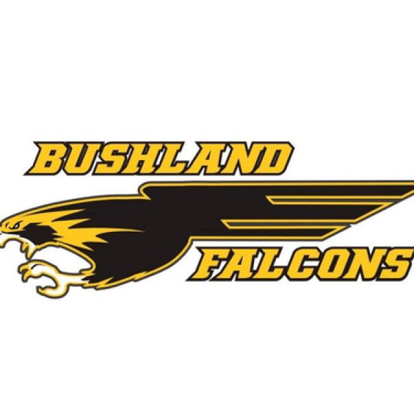 Bushland ISD