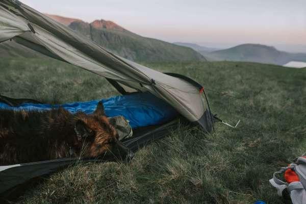 sleeping bag selection