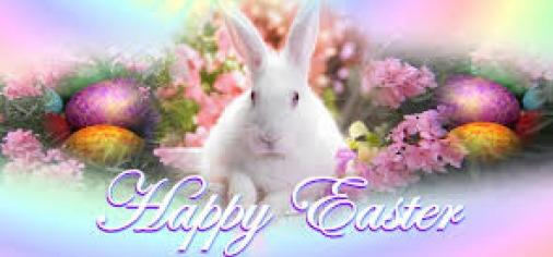 Easter.Image.Bunny resized 236 x 506