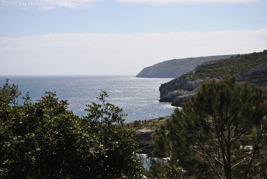 0n the Adriatic coast