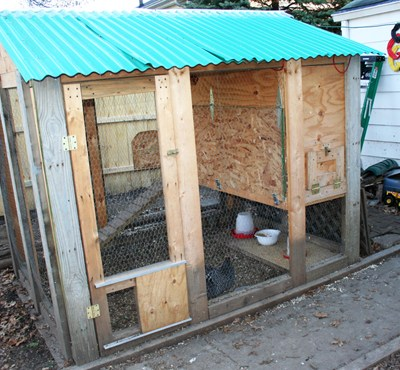 Urban Chicken Keeping 101, Part 3 – Coops and Chickens