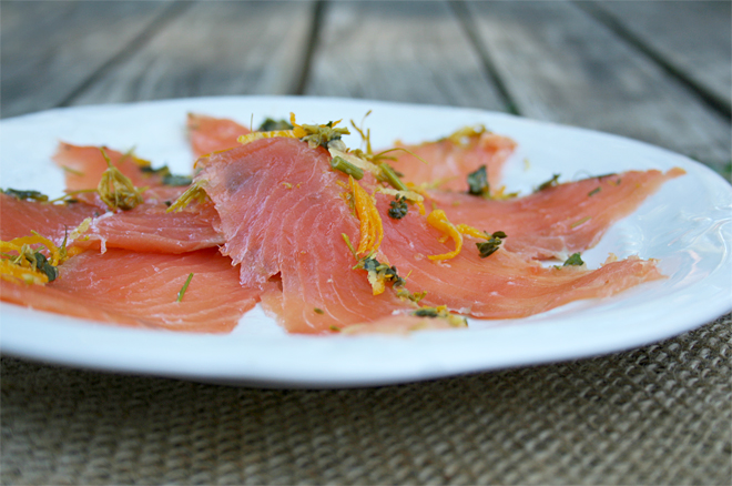 North Festival: Home Cured Gravlax