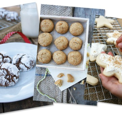 Nourishing Cookies for a Healthy Holiday, Get Your eBook today!