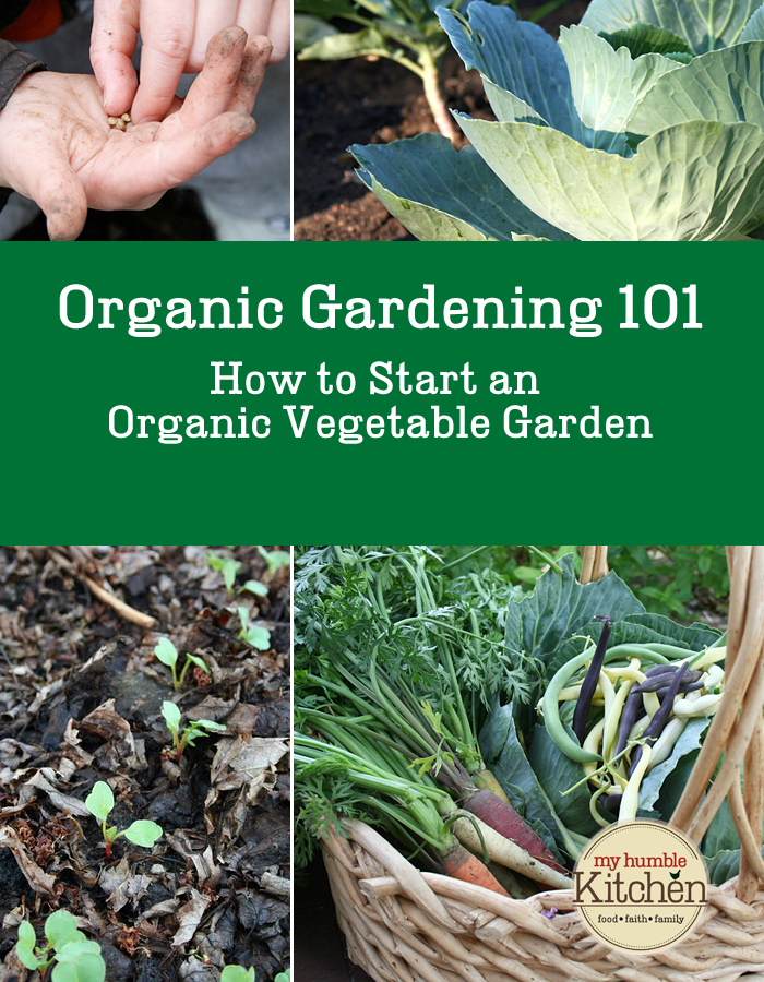 Organic Gardening 101   How To Start An Organic Vegetable Garden |  Myhumblekitchen.com