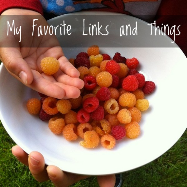 My Favorite Links and Things | myhumblekitchen.com