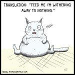 fat-cat-needs-food-color-e1477841126924 Random Comics