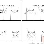Cat and Cat hot and cold