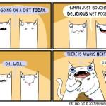 cat comic diet