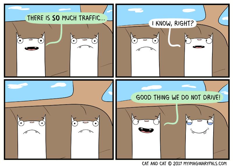 """Cat and Cat in """"Traffic"""""""