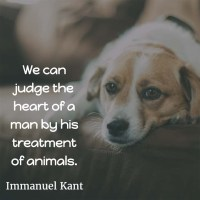 Immanuel Kant: How to Judge the Heart of a Man