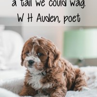 W H Auden: A Tail We Could Wag