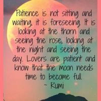 Rumi: On Patience