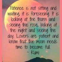 Rumi: On Patience