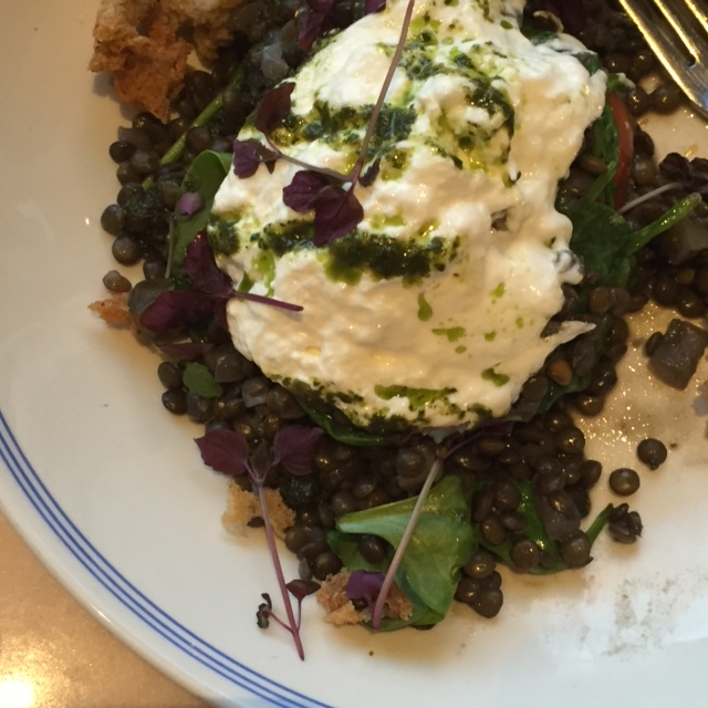 Granger and Co. in London - Puy Lentil Dish - Vegetarian
