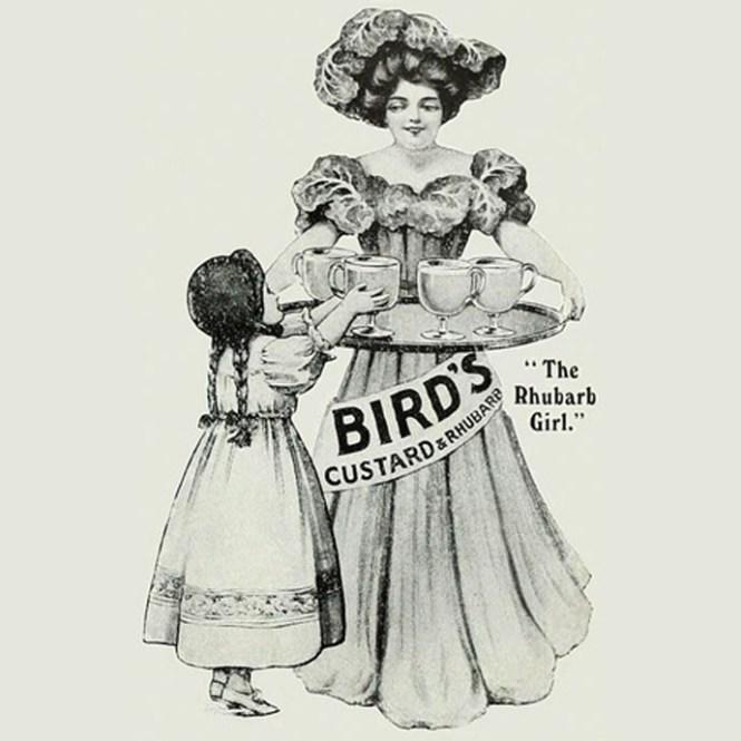 birds-custard-rhubarb-rabarber