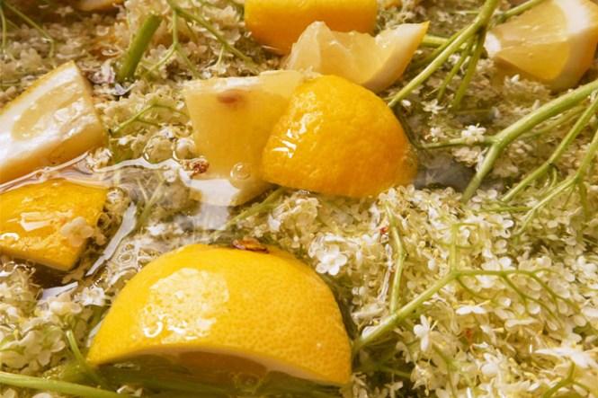 vlierbloesem-citroen