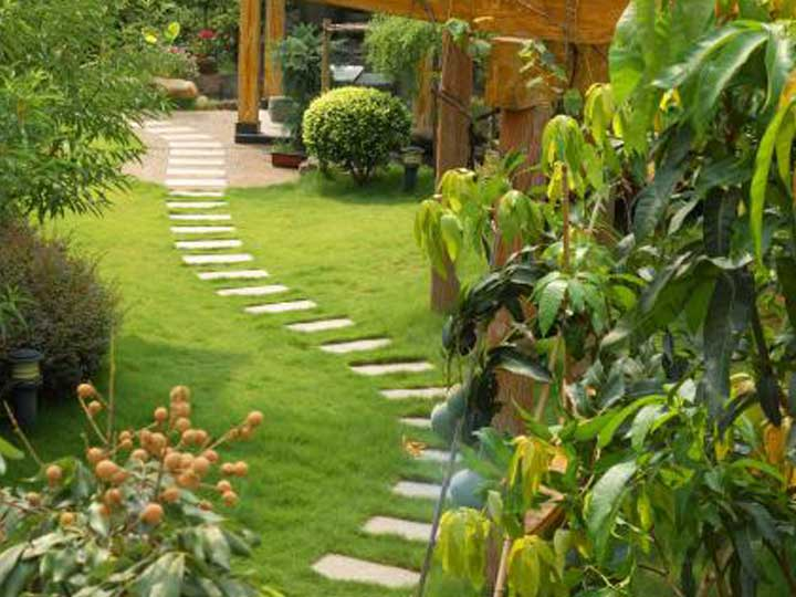 Find local landscapers near you in Adelaide, South Australia.