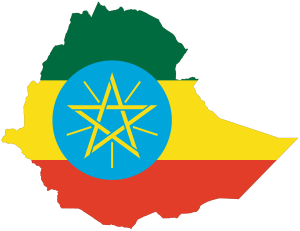 Top 10 Scholarships in Ethiopia for 2017-18 - International