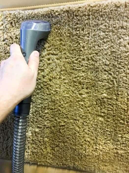 spot clean carpet and floor mats