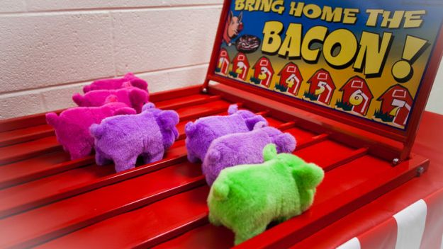 bring home the bacon carnival game to rent