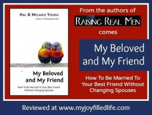 My Beloved and My Friend {a book review}