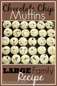 Chocolate Chip Muffins – Large Family Recipe