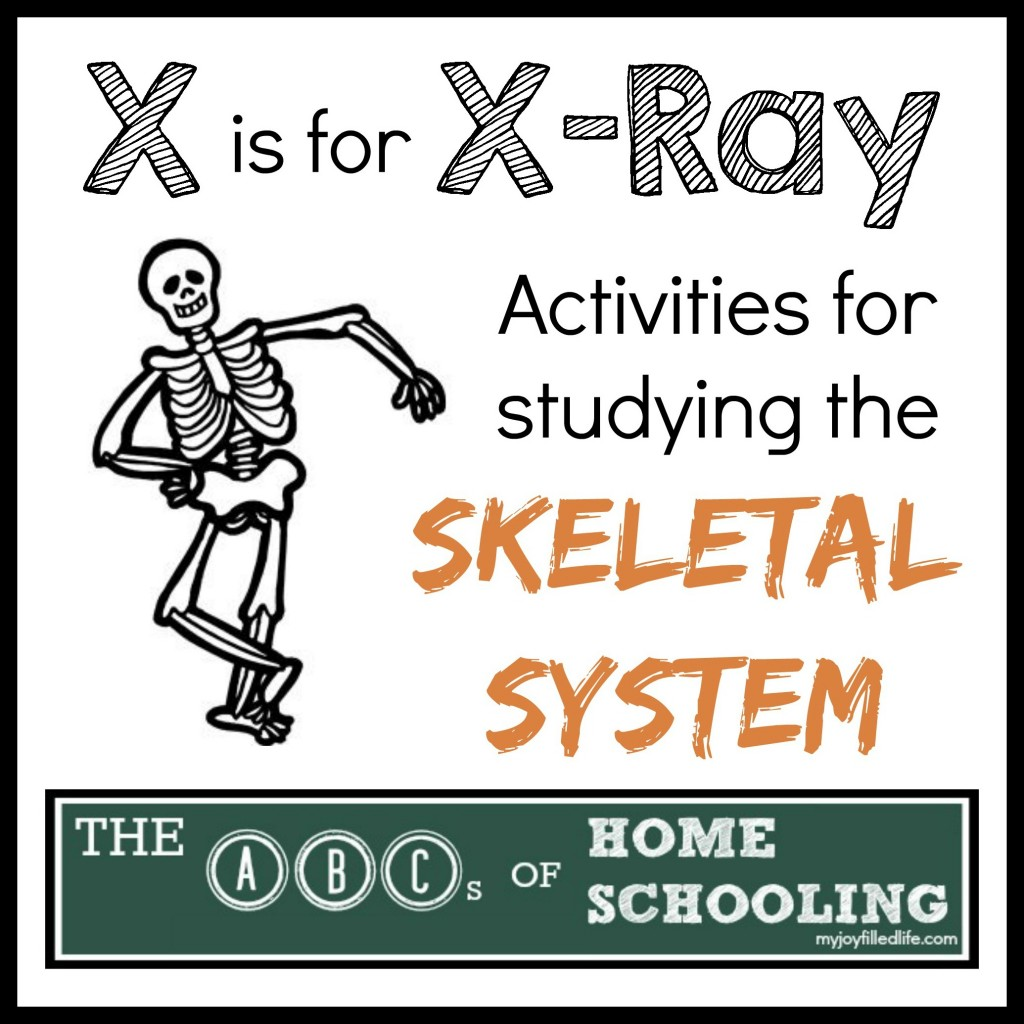 X Is For X Ray