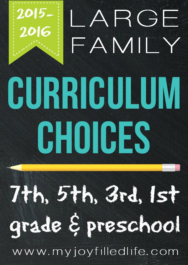 Large Family Curriculum Choices