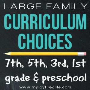 Large Family Curriculum Choices for 2015-2016