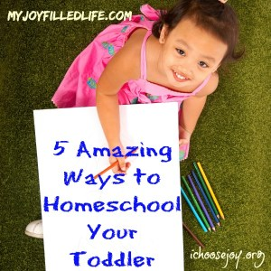 5 Amazing Ways to Homeschool Your Toddler