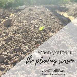 When You're In The Planting Season