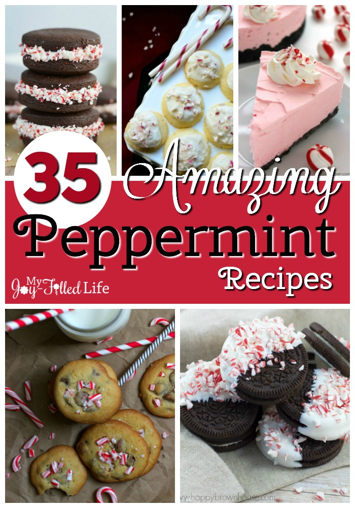35 Amazing Peppermint Recipes