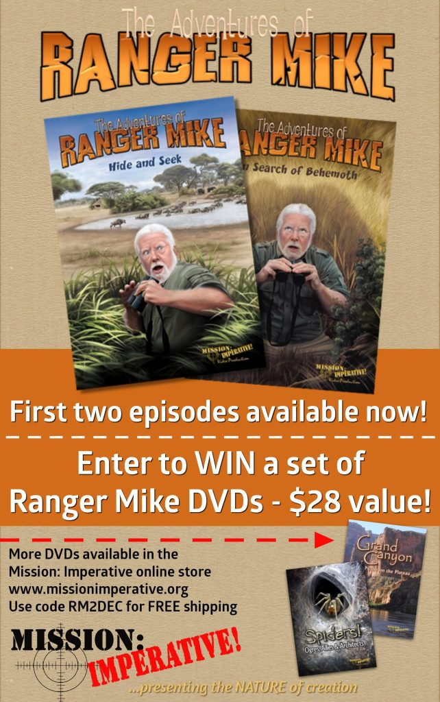 Creation-Based, Adventure Series for Kids & a GIVEAWAY