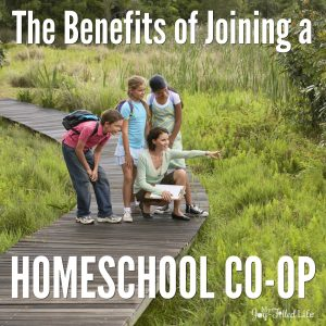 The Benefits of Joining a Homeschool Co-op