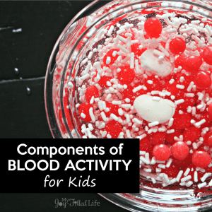Components of Blood Activity for Kids